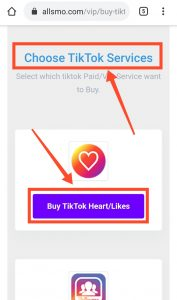 How To Purchase TikTok Likes By all SMO Tools 2020