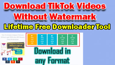 Download TikTok Videos Without Watermark | Free Online Downloader