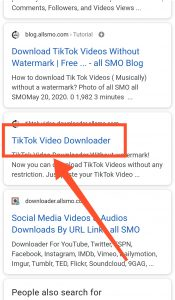 all SMO TikTok Video Downloader Website